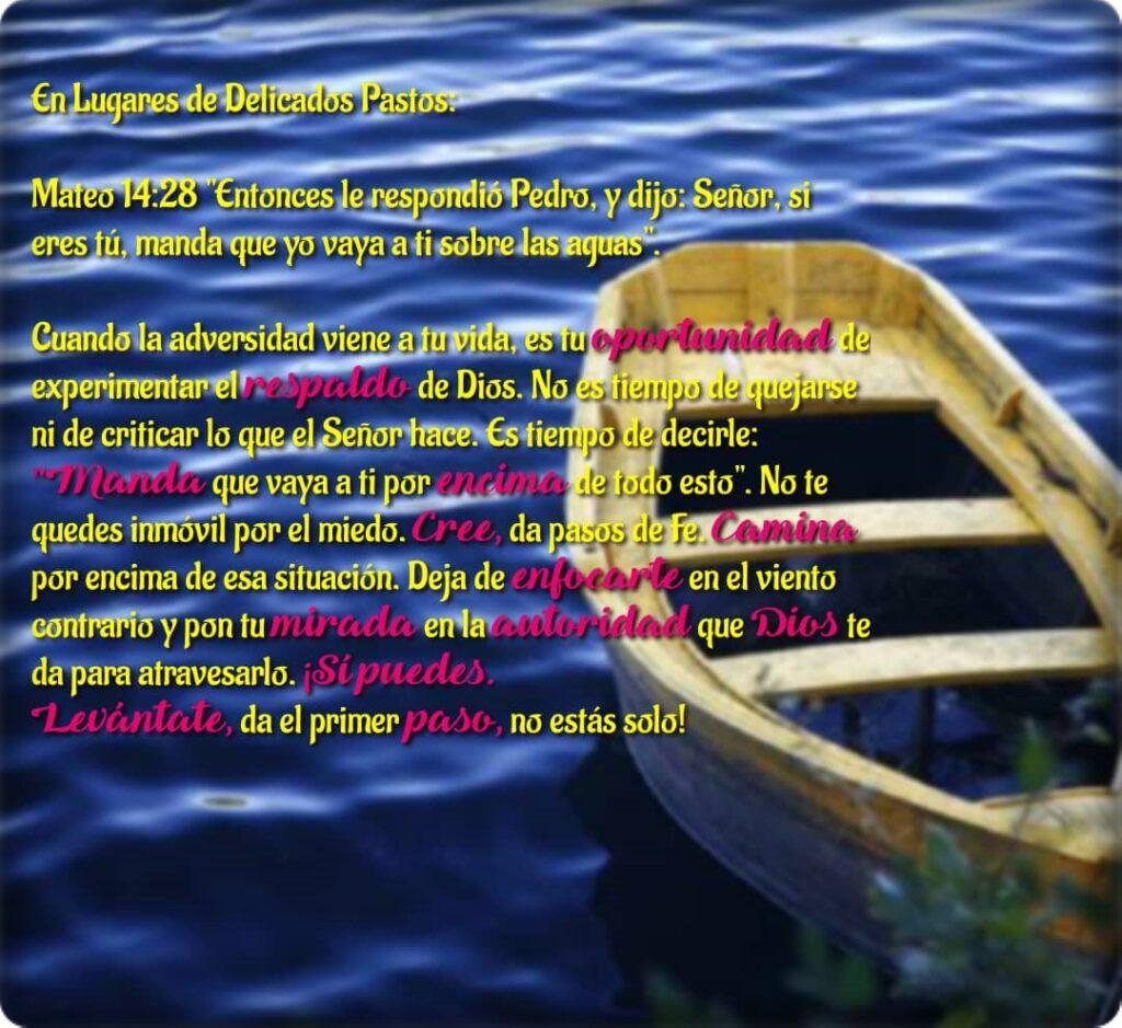 en-lugares-de-delicados-pastos-septiembre-2021-09